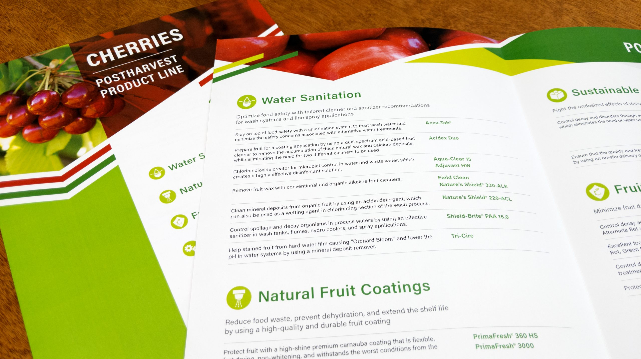 Interior of Pace brochures